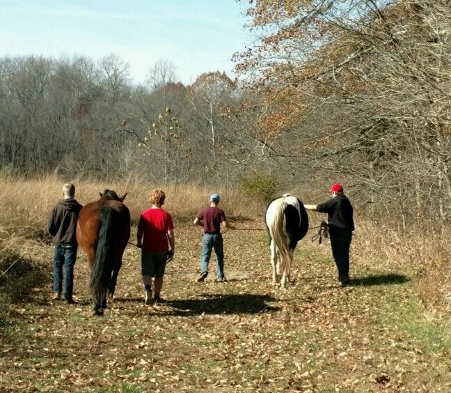 Horse Stables - CHERRY RIDGE FARMS